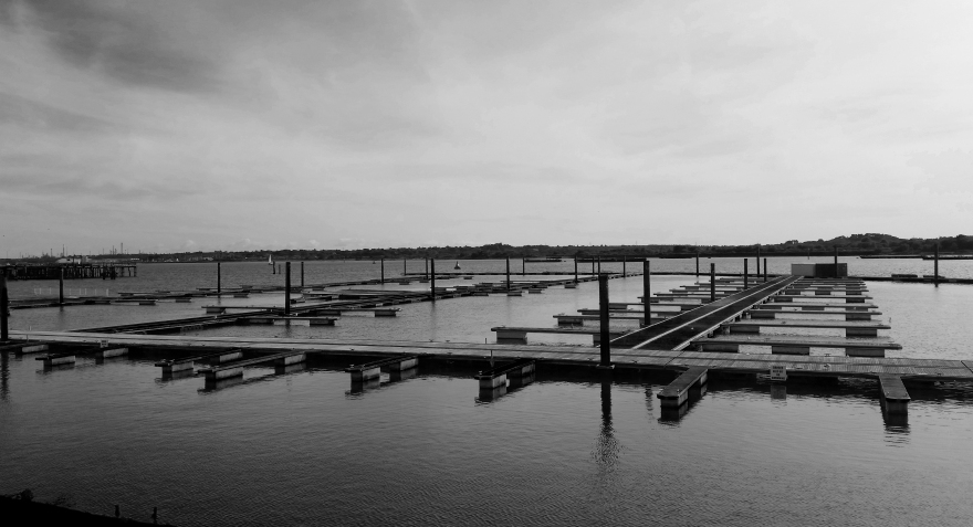 Black white wood on water.jpg